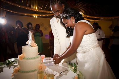 IMG_0714bCutting the Cake