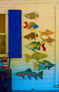 Clapboard Aquarium