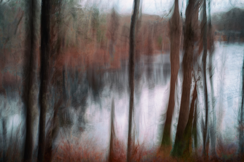 The Pond Through the Trees no.2