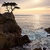 Coast - California