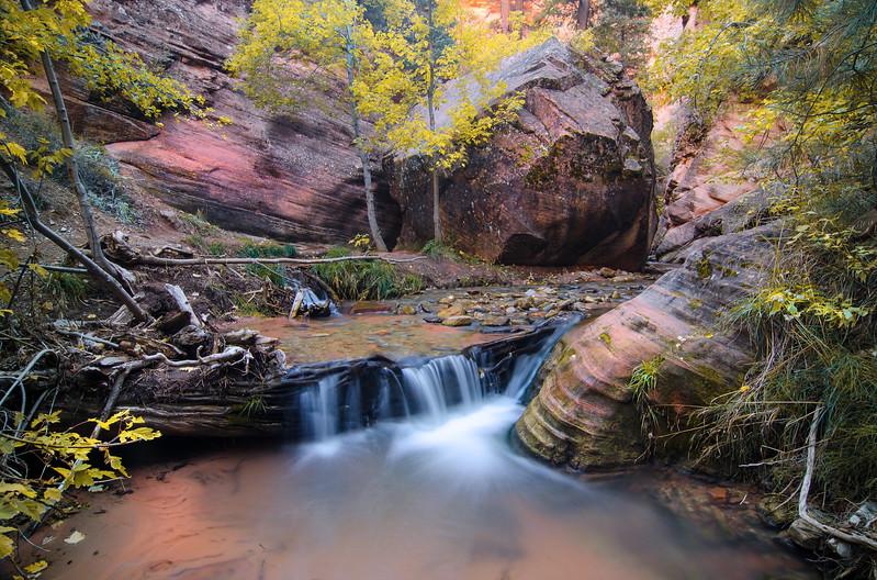 Kanarra Creek