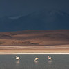The Approaching Storm - Bolivia