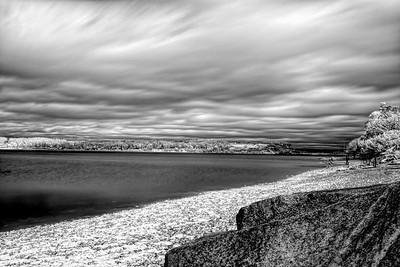 Penn Cove Shore
