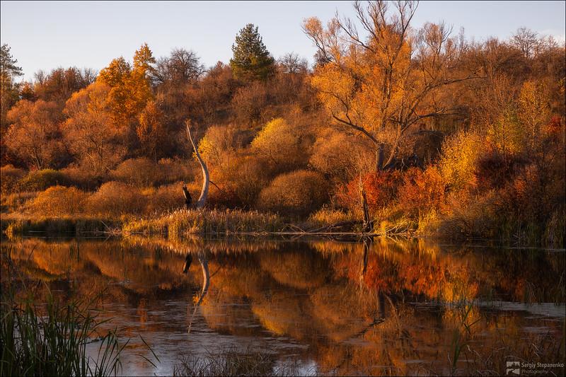 Visiting Autumn | В гостях у осени