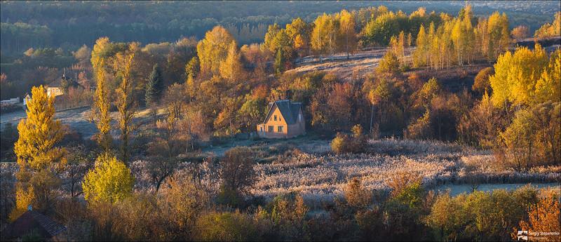 Утро на Дашенькиной даче