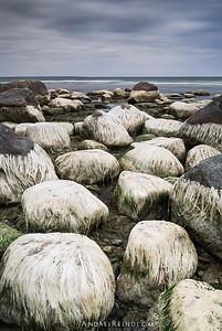 Low tide hirestyles