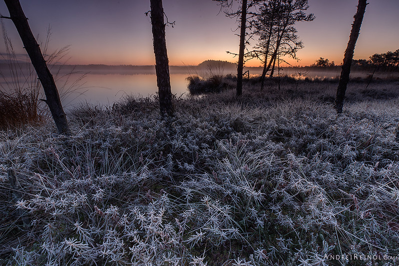 Frozen foreground