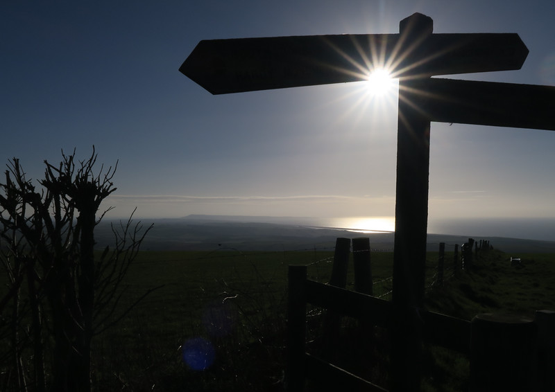 The bright sunshine catches a signpost