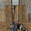 brooklyn bridge-0189