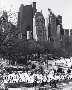 New York Christmas Scenes