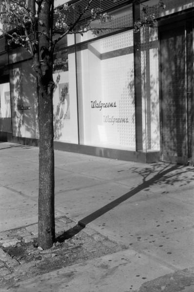 NYC, Upper East Side, July 2010, Tri-X 600, iiif-Summar