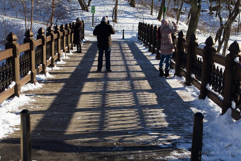 Oak Bridge with Onlookers