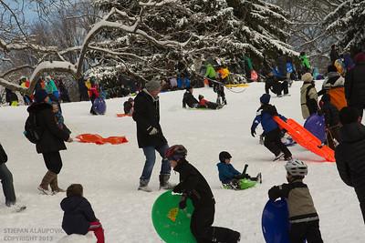 Central Park Winter 2013