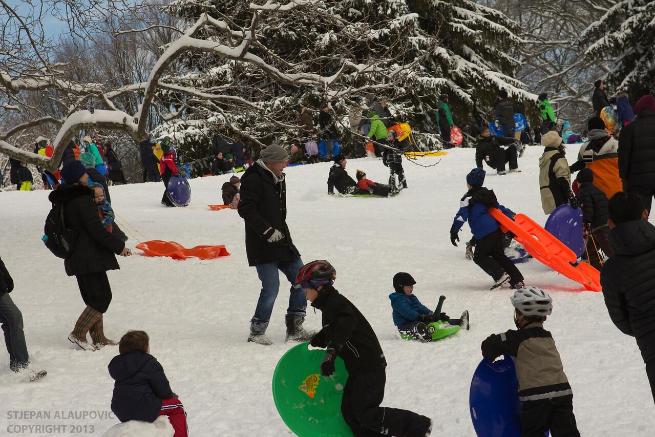 Children Sledding at Cedar Hill