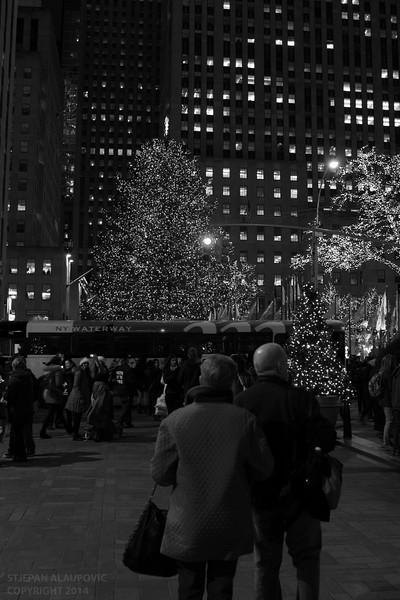 Rockefeller Center Chistmas Tree 2014