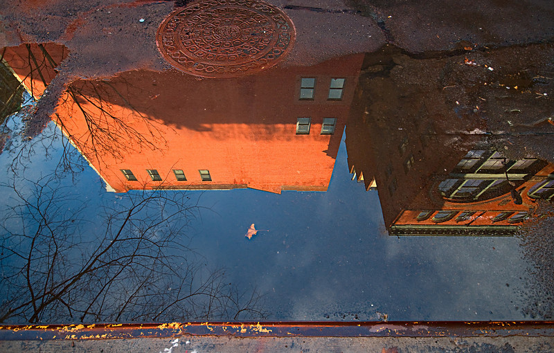 Reflections of Chelsea after the Storm