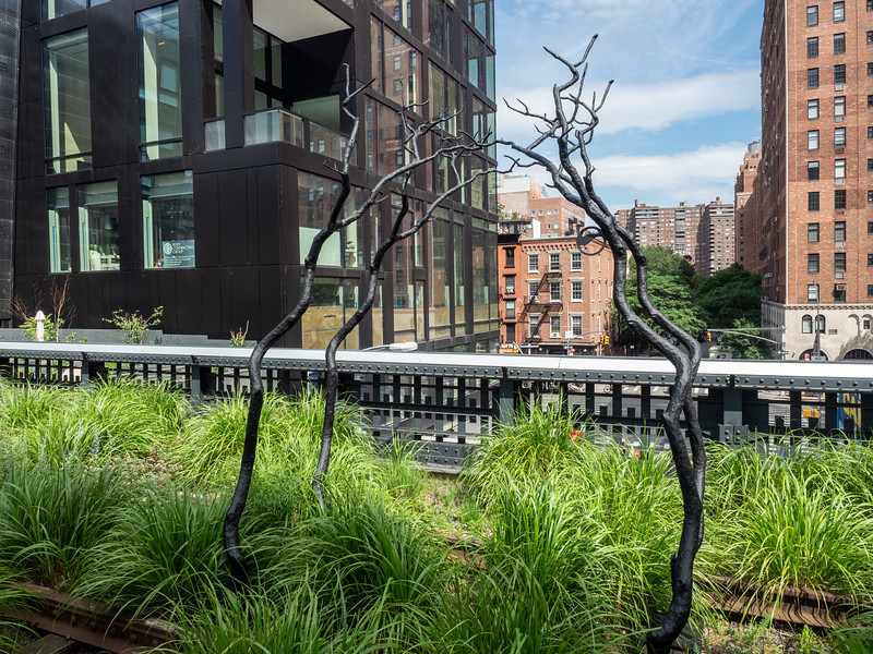 Tree Sculpture on the High Line