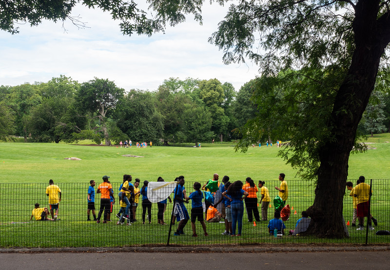 Field Day in the East Meadow, Central Park