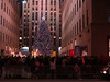 """The"" Christmas Tree at Rockefeller Center. This view is from across Fifth Avenue."
