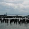 Verazanno Bridge form the Staten Island Waterfornt