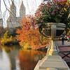 Central Park -Bow Bridge