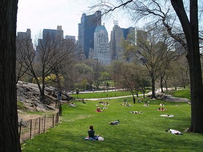 Central Park, Spring 2007