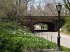 Central Park - Spring 2007