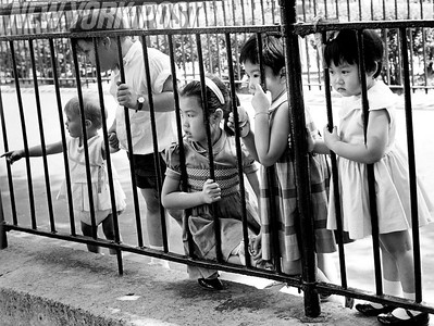 Ft Hamilton Playground in Brooklyn. 1966