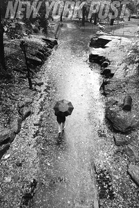 NYC Central Park On A Rainy Day. 1993