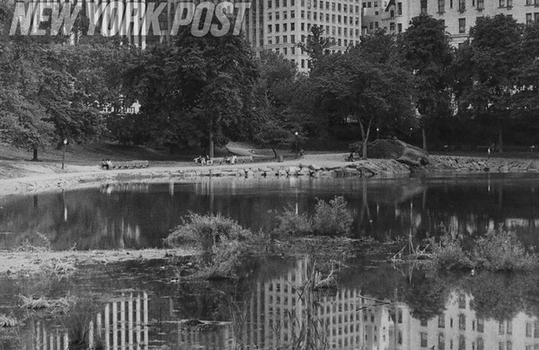 """The Pond"" in Central Park in 1977"