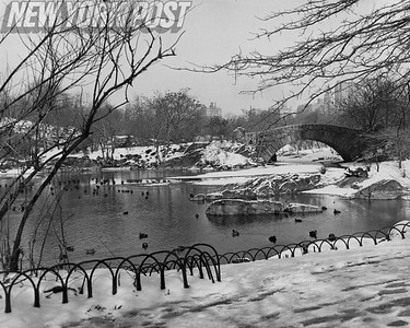 BEAUTIFUL Winter Scene NYC Central Park. 1949