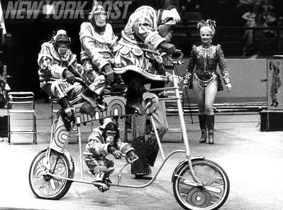 Ringling Bros Barnum & Bailey Circus Opens. 1979