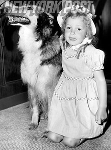 A girl refugee and her collie on board the USS Constitution from Turkey. 1954