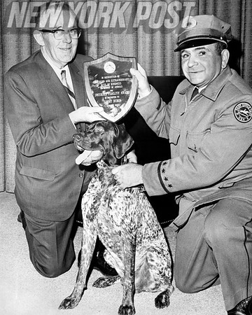 Mailman accepts Animal Kindness Award from Post Office Director. 1965