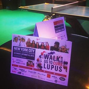 2014 New York City Walk Kickoff