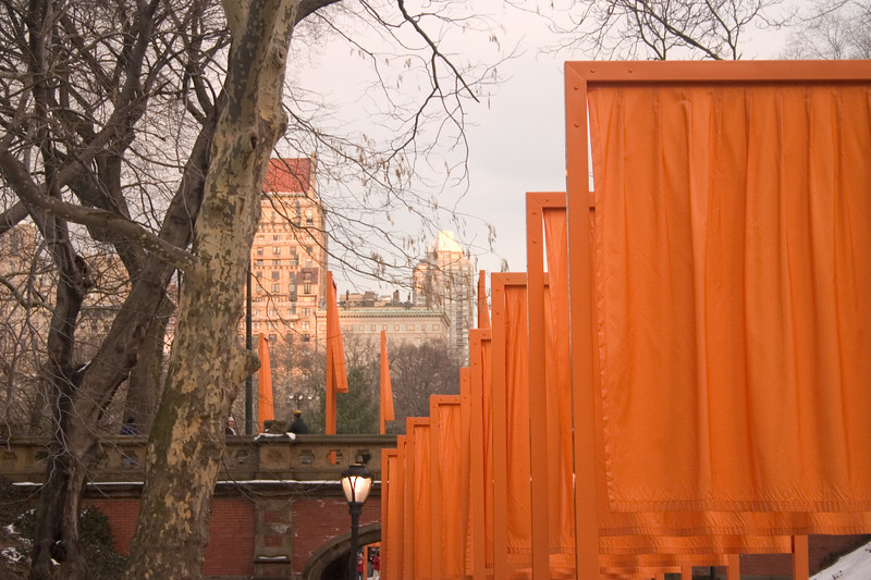 2005_2_24_NYC_The_Gates-34