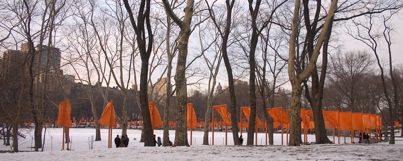2005_2_24_NYC_The_Gates-37