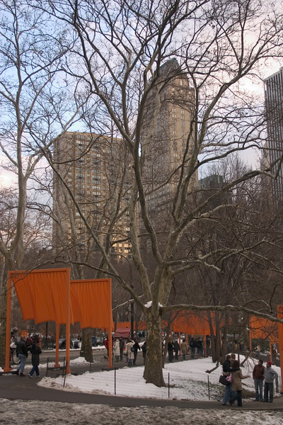 2005_2_24_NYC_The_Gates-16