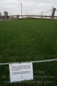 Brooklyn Bridge Park Grass Field