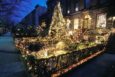 Christmas lights adorn a front yard on First Place in Carroll Gardens, Brooklyn.