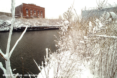 Snow covered weeds on the shore of the Gowanus Canal across from the Dynamo building also called the BatCave. The Brooklyn Rapid Transit Powerhouse, is now being restored by architects Herzog & de Meuron, with the backing of a nonprofit and developer Joshua Rechnitz. Also known as The Batcave, this monumental structure dates back to at least 1902, and is not yet landmarked. It was also one of the most polluted pieces of property along the shoreline. The Powerhouse Workshop will be a contemporary industrial fabrication center established to serve the working needs of artists. Affordable and accessible space for industry and production is increasingly scarce in New York City. Fabrication shops in wood, metal, ceramics, textiles and printmaking will provide sophisticated production capabilities and support risk-taking and exploration for artists In Powerhouse's new Gowanus home.