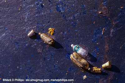 """Empty bottles lie in the oil coated water of the Gowanus Canal in Brooklyn, NY, in 1998. Sewage flowed into the canal as early as 1858, and by the 1880's the waterway had gained the moniker """"Lavendar Lake"""" for its odorous qualities. The current cost of the overall EPA Superfund cleanup plan is estimated to be over $1.5 billion, and the entire project won't be completed until mid-2023. The Gowanus Canal is located in one of the densest population centers in America."""
