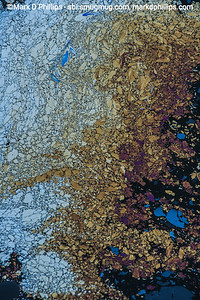 """Oil patterns form a frenzy of shapes on the Gowanus Canal in Brooklyn, NY, caused by the coal tar and oil seeping to the surface. Sewage flowed into the canal as early as 1858, and by the 1880's the waterway had gained the moniker """"Lavendar Lake"""" for its odorous qualities. The current cost of the overall EPA Superfund cleanup plan is estimated to be over $1.5 billion, and the entire project won't be completed until mid-2023. The Gowanus Canal is located in one of the densest population centers in America."""