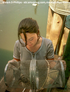 Tatyana Apalboym, an intern for the Brooklyn Center for the Urban Environment, studies a blue crab which was caught in the Gowanus Canal in 1999 by the Union Street Bridge. Unfortunately, the canal began to stagnate again when the flushing tuneel stopped working and by 2013, the canal was taken over as a Superfund site. The current cost of the overall EPA Superfund cleanup plan is estimated to be over $1.5 billion, and the entire project won't be completed until mid-2023.