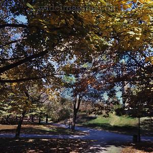 Central Park, near Cleopatra's Needle November 1977