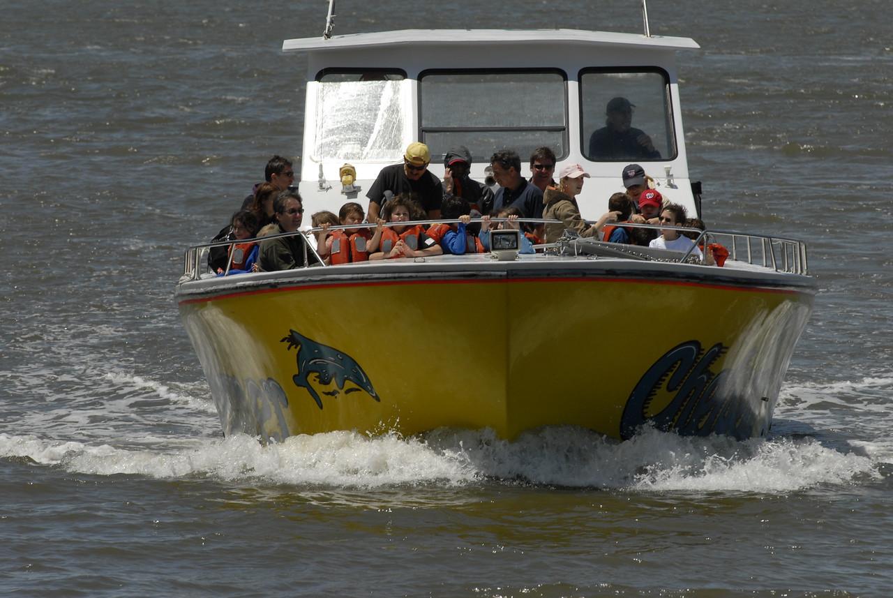 Chelsea Screamer Boat