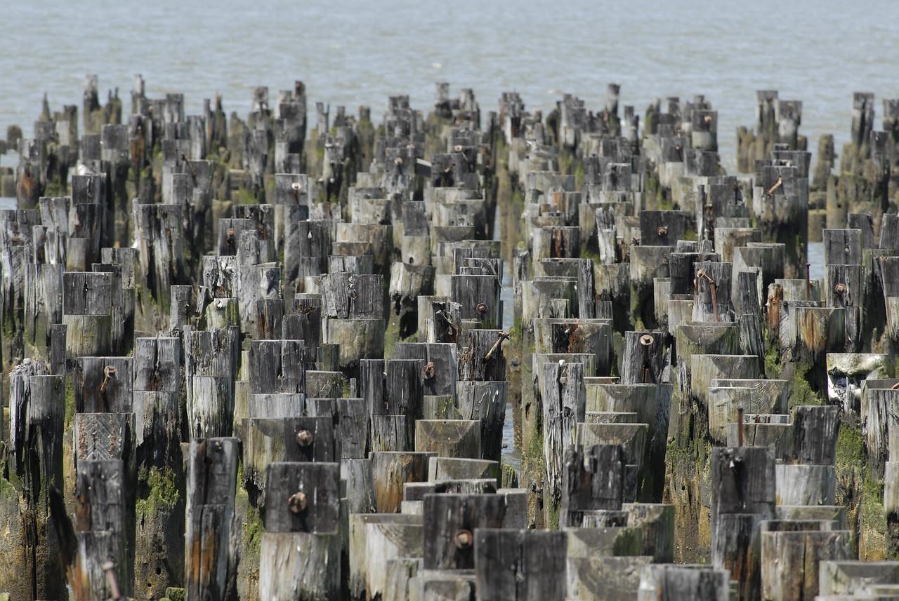 Pilings, Hudson River