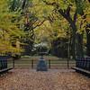 Central Park - Nov 1, 2009