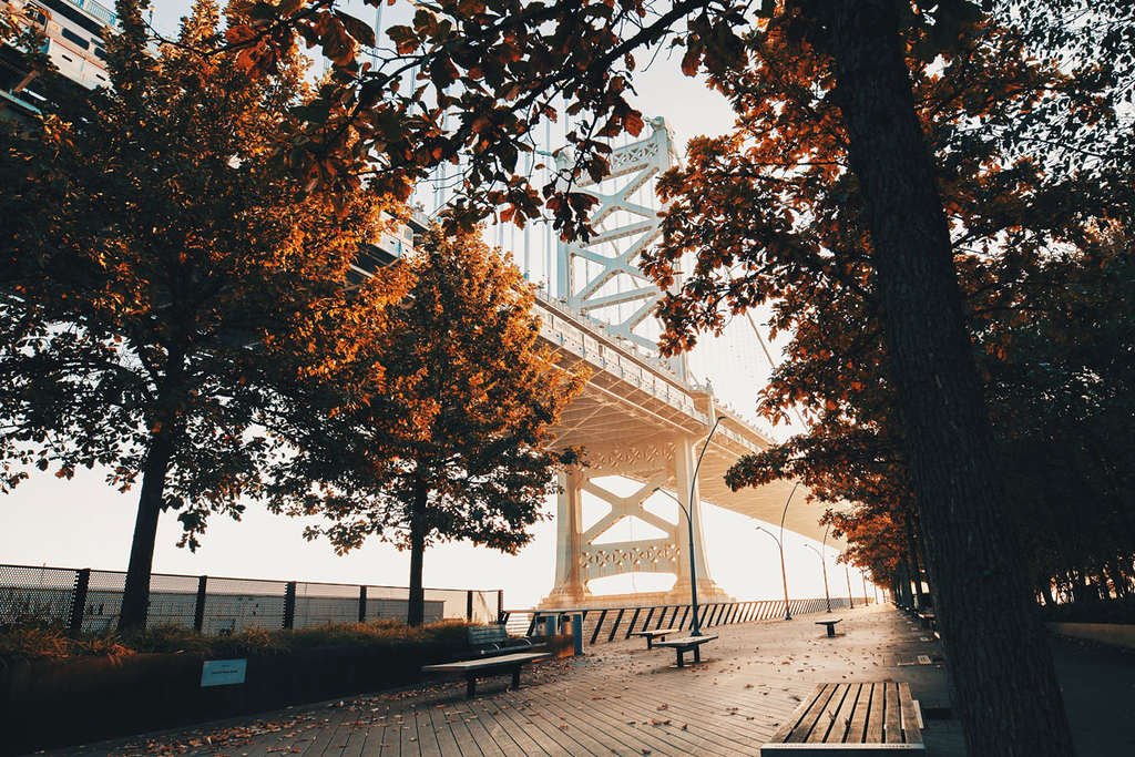 fall day trips from nyc is philadelphia