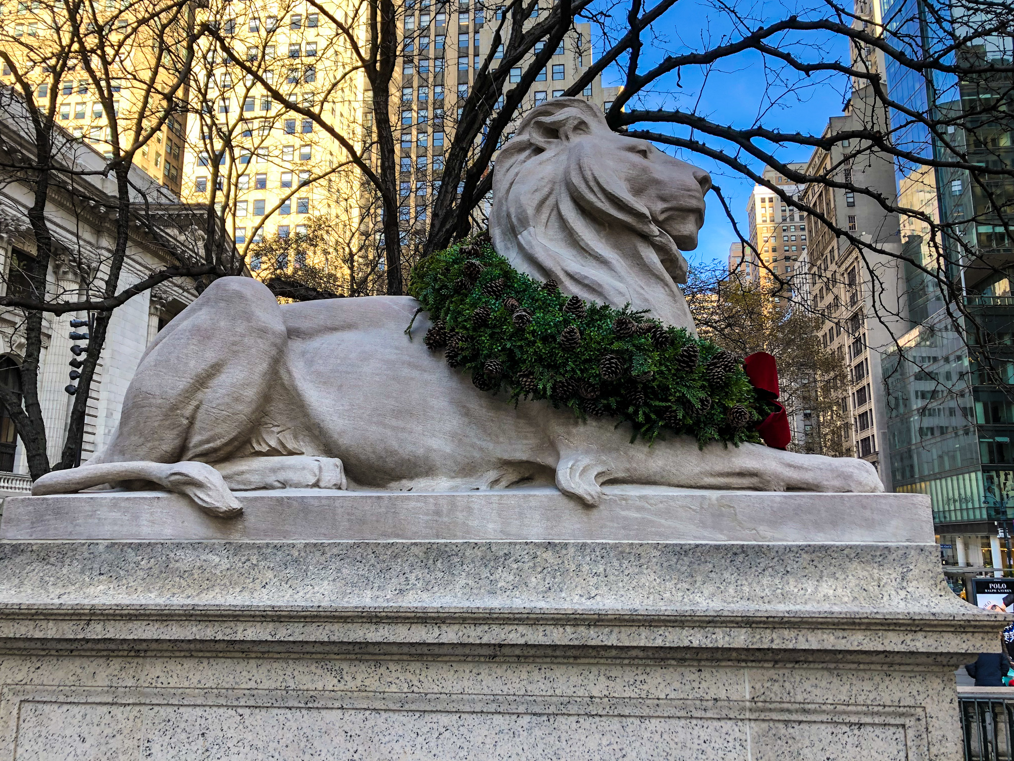 planning a trip to new york in december means seeing the nycpl lions
